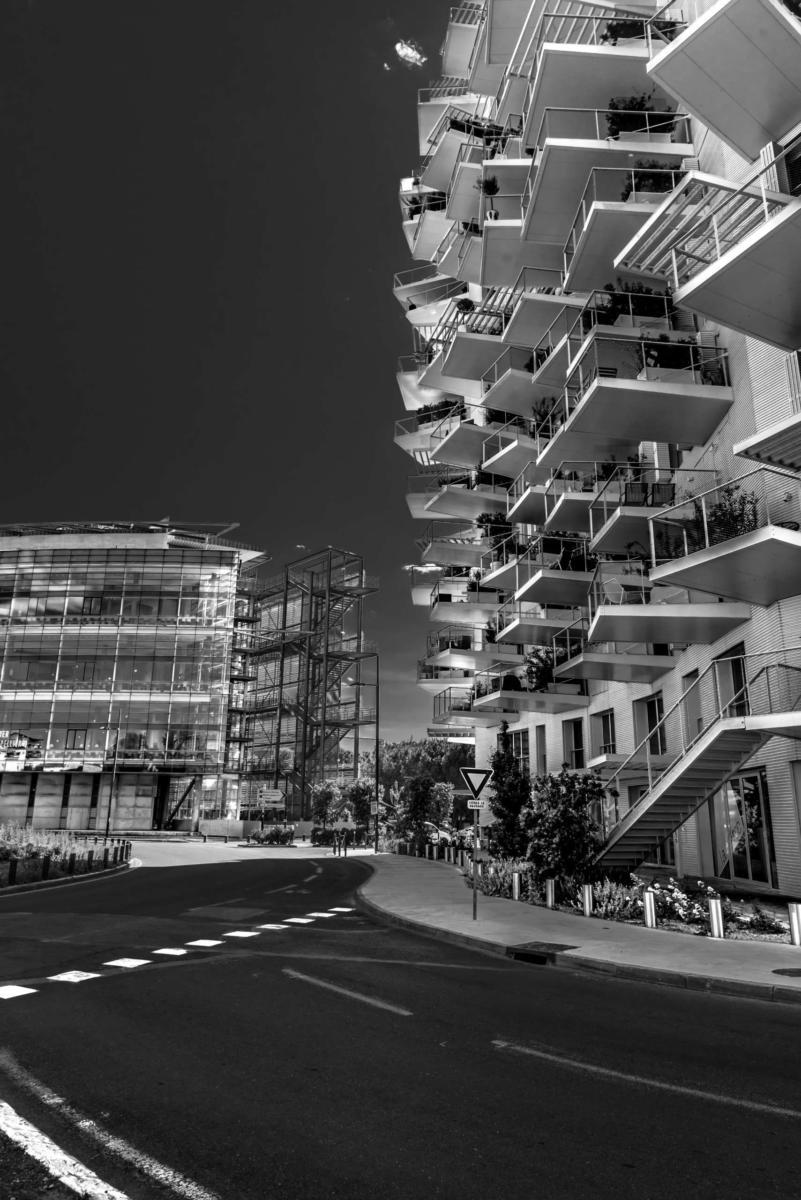 photo_immeuble_arbre_blanc